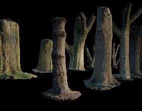 10 Photo Scanned Tree Trunks 3D