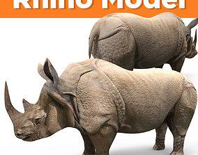 3D rhino rhinoceros realistic Model game-ready