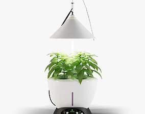 3D model Revone Magic Garden phyto lamp