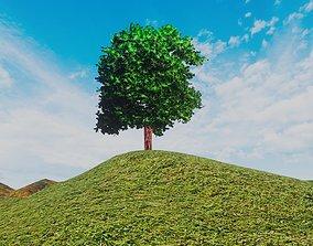 3D model Hill Tree