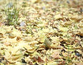 Photorealistic Leaves - Volume 1 3D