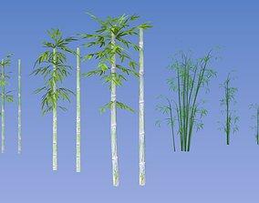Bamboo set 3D model