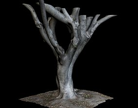 3D model leaf Ficus